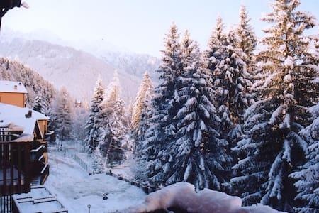 Mountain flat in the Italian Alps - Wohnung