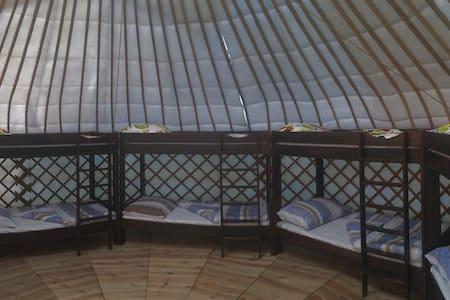 Bakonyi jurták a Bagolyvár kertjében Zircen - Yurt