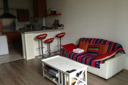Room close Paris 17m2 - Issy-les-Moulineaux