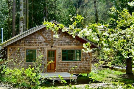 Forest garden cottage by the ocean - Powell River - Cabin