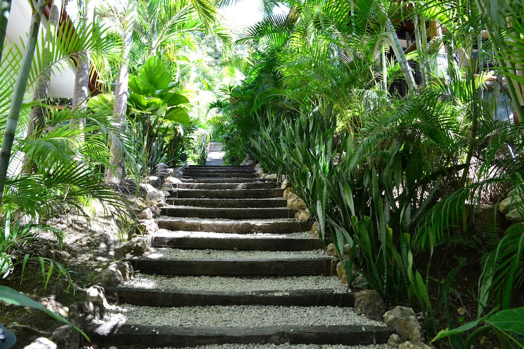 Walking up the stairs to the casita.