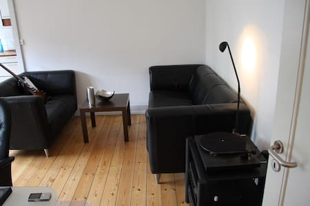 Cosy and inviting apartment in Copenhagens beautiful Frederiksberg.  Very close to transport options taking you directly to central Copenhagen in no more than 10 minutters. Around the corner are several grocery stores and excellent dining options.