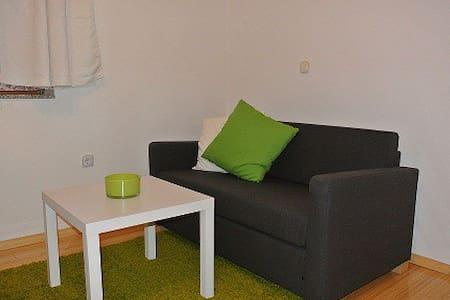HOME IN CITY STUDIO APARTMENT - Leilighet