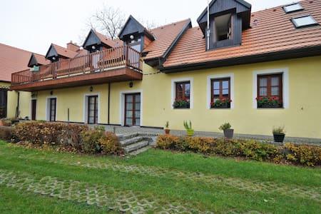 Charming and stylish cottage - Bušovice - Haus
