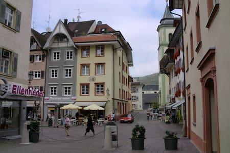 Waldshut Altstadt 1 Zi. Whg. 3.OG - Waldshut-Tiengen - Hus