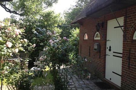 Romantisches Reetdachhaus - Welt - Hus