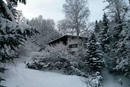 Skiurlaub in eigenem Haus - Ház