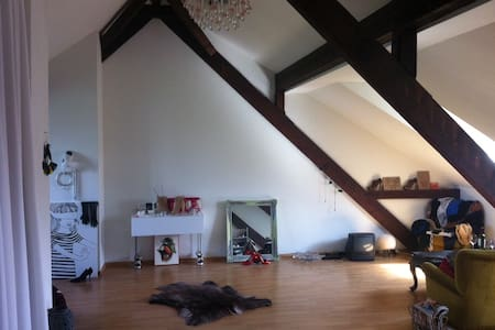 Loft to rent next to Art Basel - Basilea