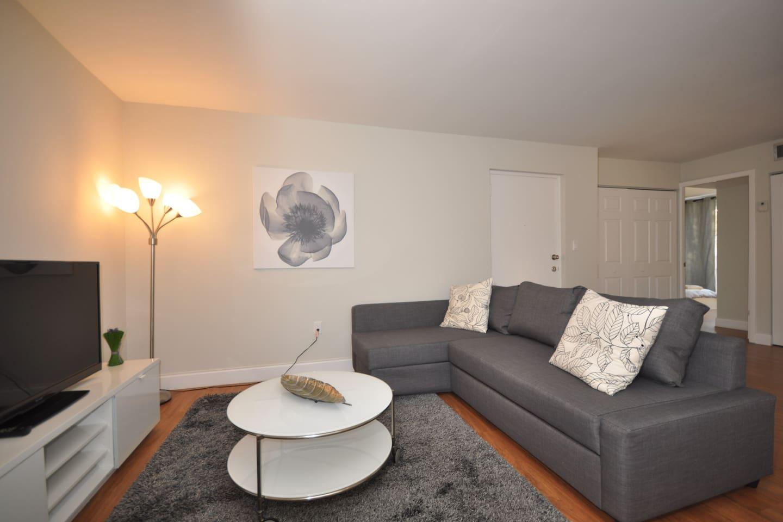 Living Room w/ queen sofa bed.