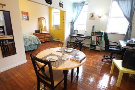 Cozy SUNNY Park Slope Apartment! - Brooklyn - Apartment