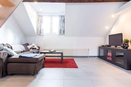 Fabulous appartment in city center! - Antwerpen - Apartment