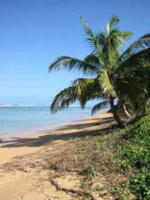 Beautiful calm Anini Beach