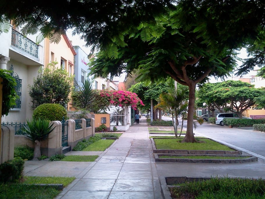 Typical street in Magdalena