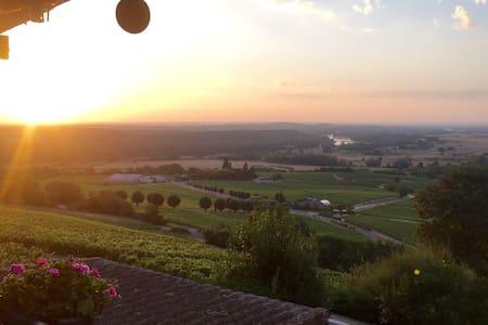 Vue panoramic sur le vignoble - Maison
