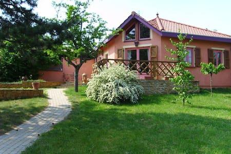 Très jolie Villa proche de Lyon - Villa