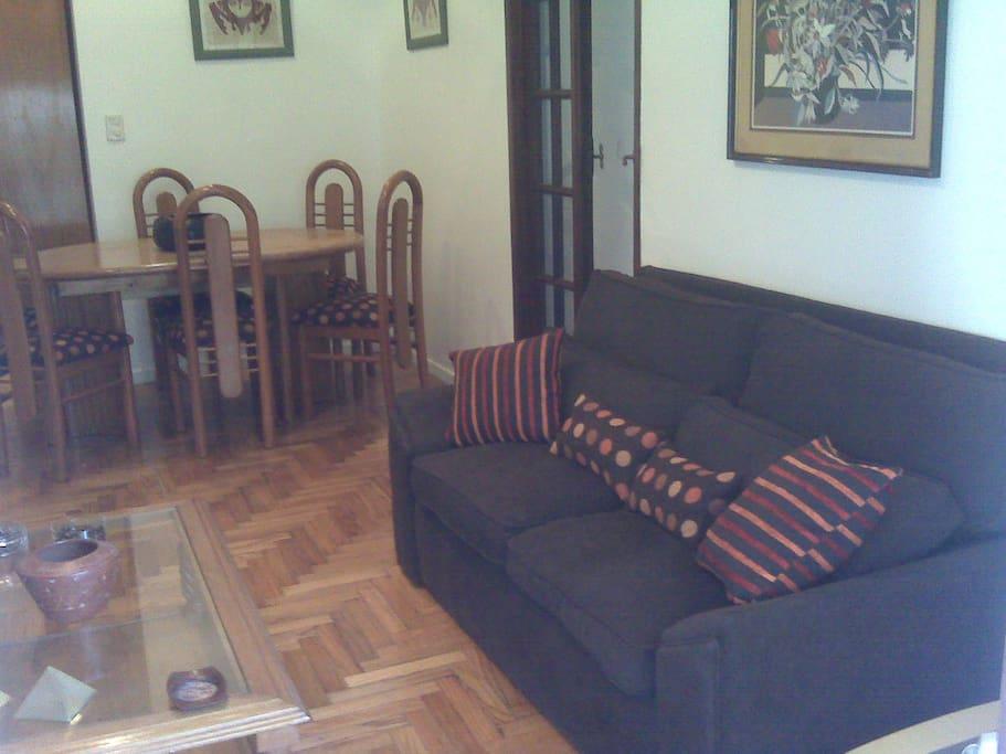 Beautiful apartment in Recoleta