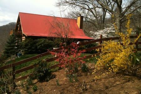 Rustic Cabin Near Asheville, NC - Cabanya