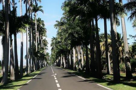 Jolie villa meublée - Ház
