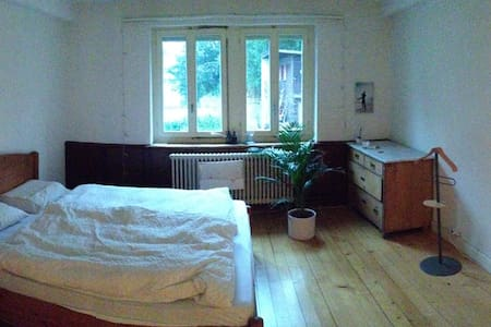 Big room in a nice house - Riehen - Casa