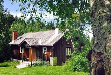 Björntomta - Cabin