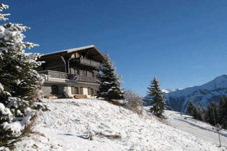 Cosy chalet with stunning view. - Alpehytte