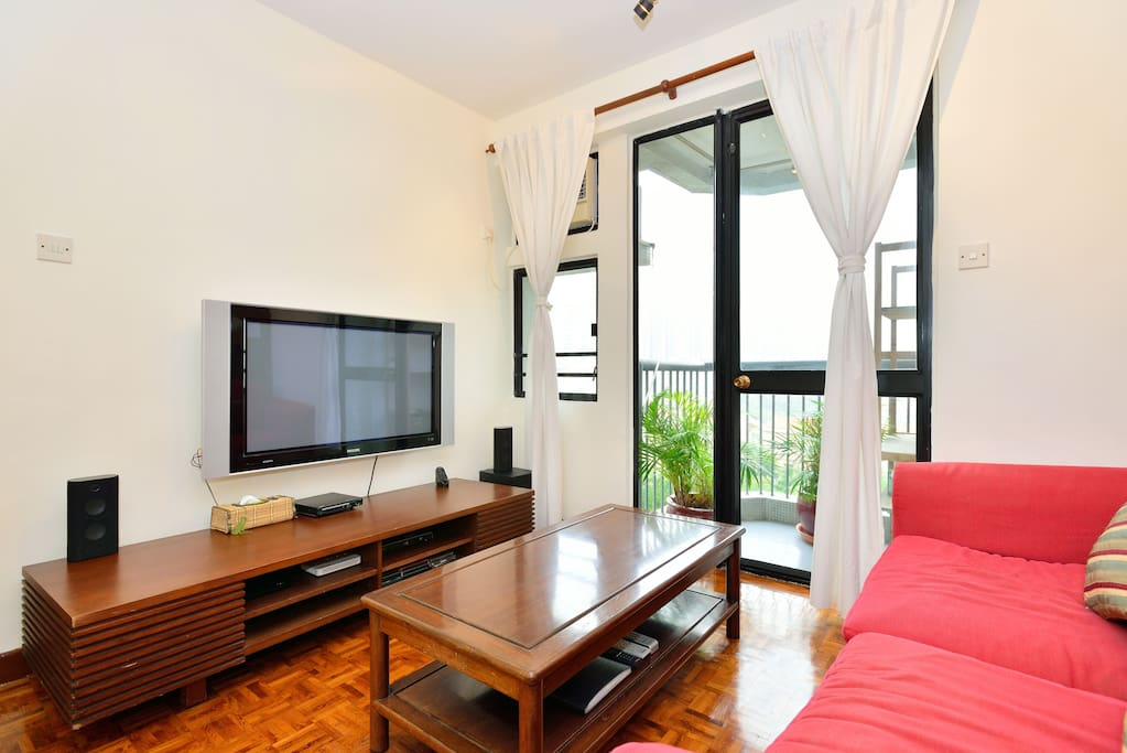 Fully equipped living room with big screen TV, cable, WiFi & fold-out sofa bed.