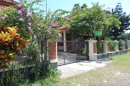 d'Katu Guest House - Sidorejo