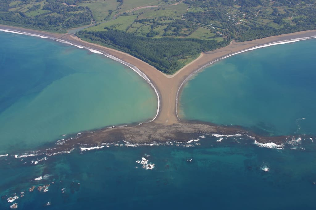 Area Pictures of Marino Ballena National Park. Whale tail