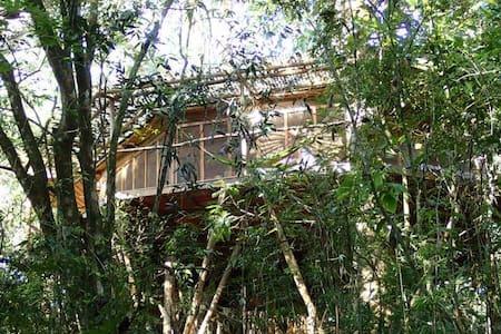 Luxury Tree House in the Mountians - San Rafael Abajo