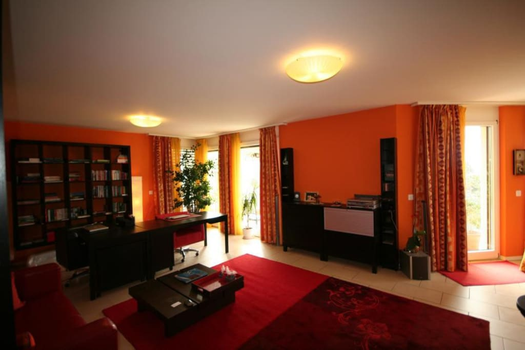 Large living room with full entertainment equipment.