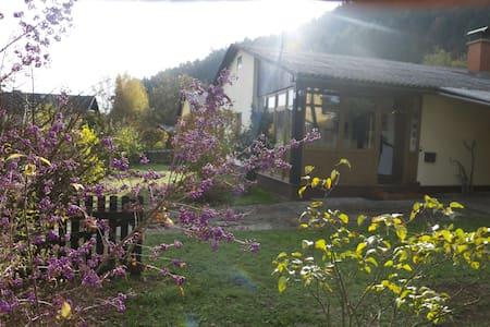 Mooi vrijstaand huis met grote tuin - Ház
