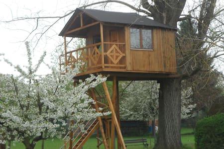 Cabane dans un arbre Gite insolite - Srub