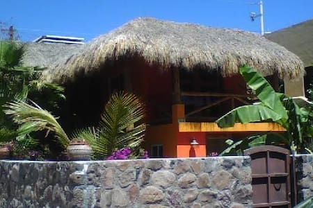 Charming Tiki House in San Carlos!!