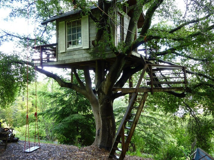 Magical Tree House, Airbnb Rent a Tree Hut for a Night Located in San Francisco, CA