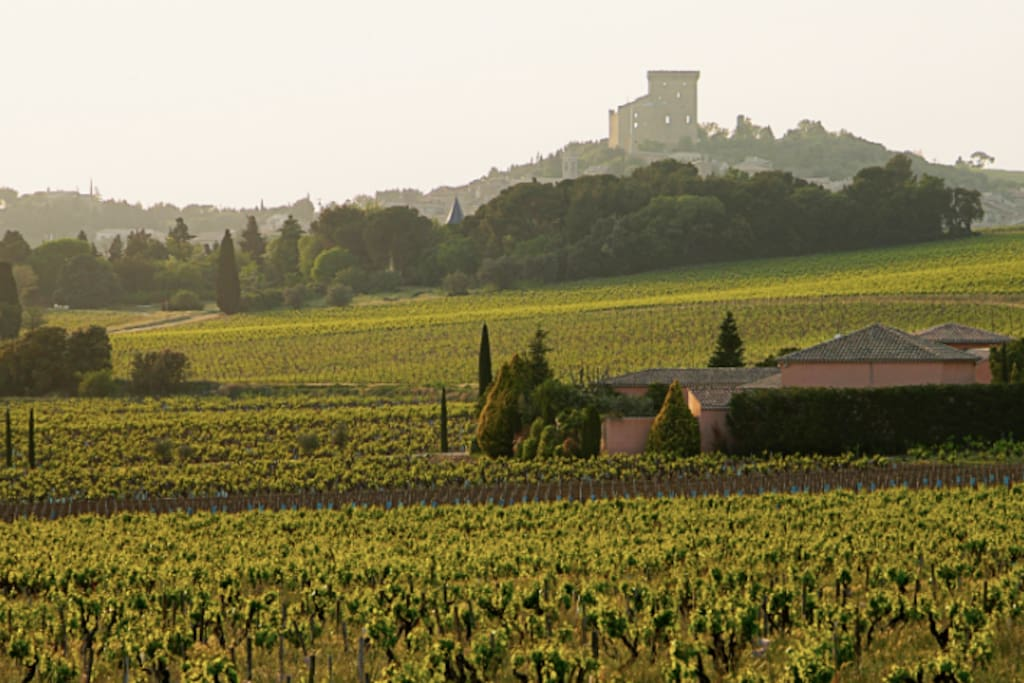 Le village de Chateauneuf du Pape - Vaucluse - 84 - FRANCE