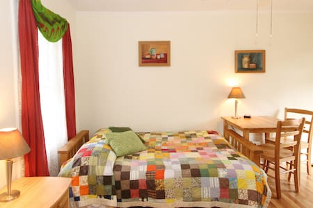 Bright Efficiency in West Asheville - Asheville - Apartment
