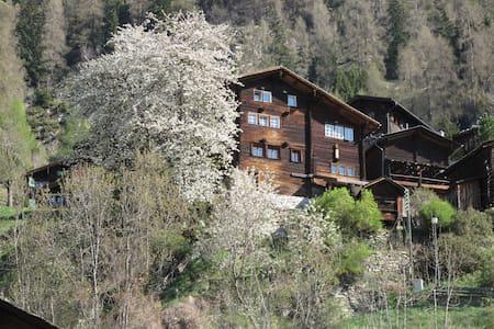 Echtes Walliserhaus in Betten-Dorf - Hus