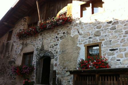 Rustico tra le Dolomiti - Leilighet
