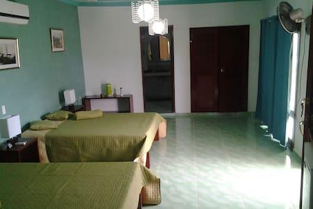 Hostal Santa Elena - Habitación 4 (Suite) - House