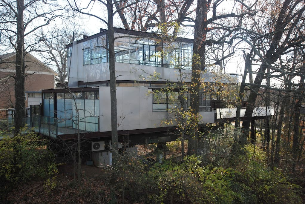 Both Floors Modern Glass Tree House