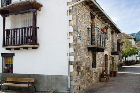 Casa en Parque Natural en Pirineo - Talo