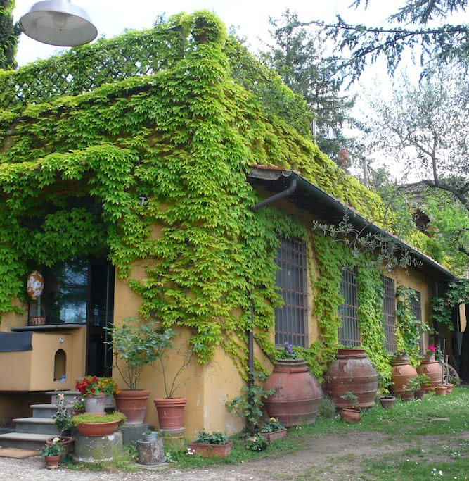 Charming lemon house in tuscany houses for rent in florence for Rent a house in tuscany