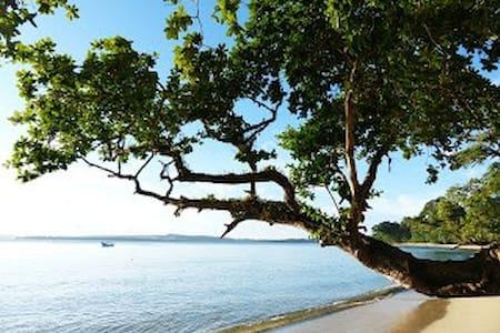 nyang nyang surf camp siberut - House