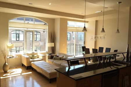 Luxury Downtown Penthouse -1300 sqft - Condominium