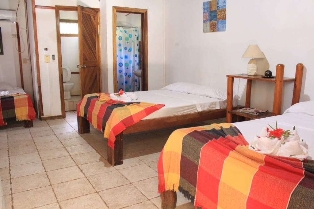 2 full sized beds and one single bed in Mango Room, Right by the best beach break in town