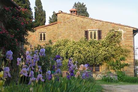 Poggio Pratelli  bio farmhouse in tuscany - Poggio Alla Croce - Apartment