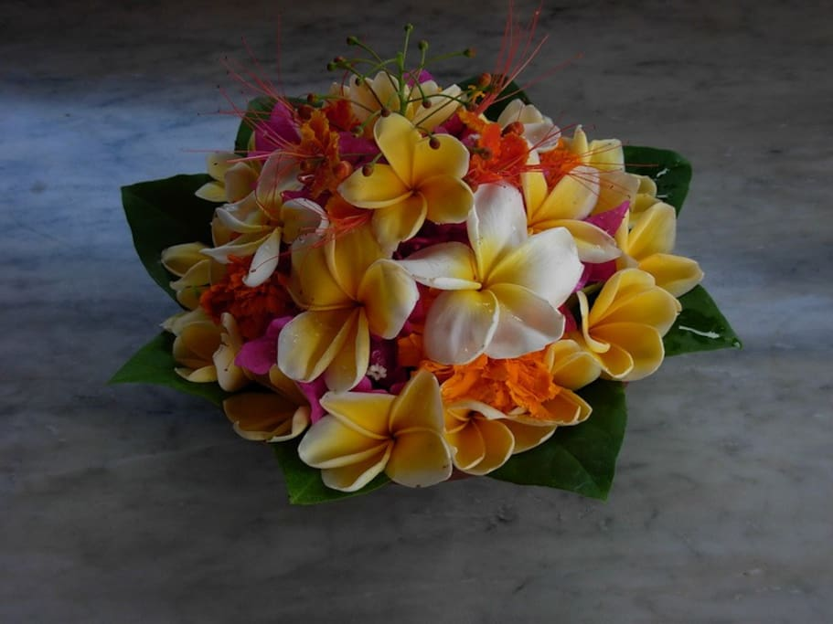 And Breathe: The scent of Frangipani