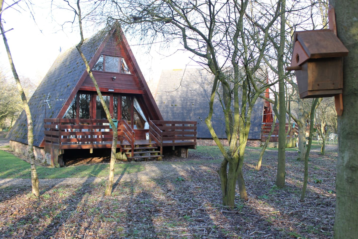 Our wood cabin is on the edge of a nature reserve (a site of special scientific interest) with amazing bird-watching.