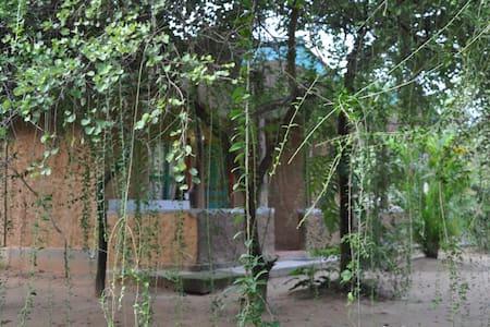 AC room (2-4 pax) clay Hut Village - Aamiaismajoitus