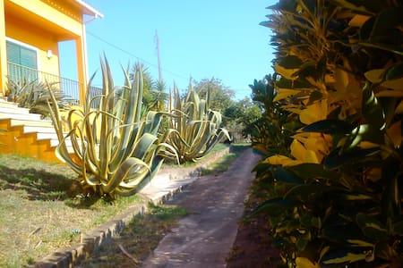Casa na Aldeia/ Village Experience TOMAR - Ev